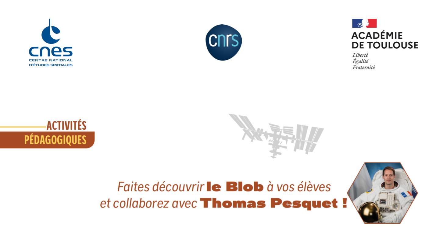 alpha_blob-activites_vignette.png
