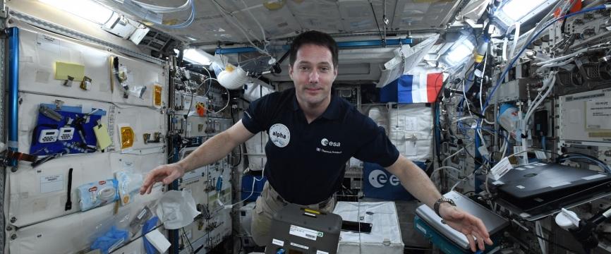 Le réveil a sonné pour les blobs à bord de l'ISS !
