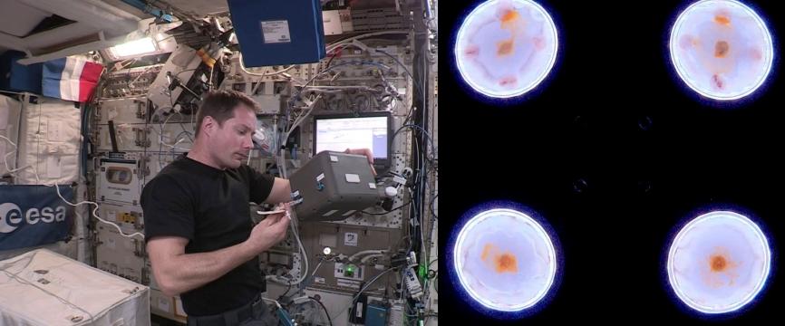 #ElèveTonBlob : l'odyssée des blobs spatiaux
